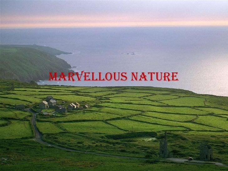 Marvellous nature