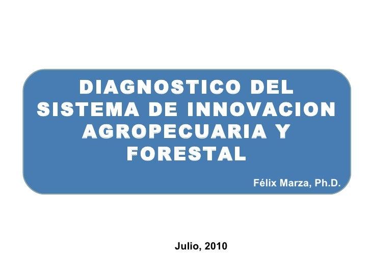 Marza Félix Presentacion 1 Diagnostico [R.M.]