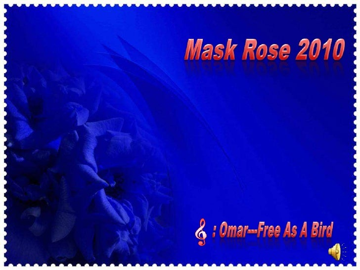 Mask Rose 2010<br />  : Omar---Free As A Bird<br />