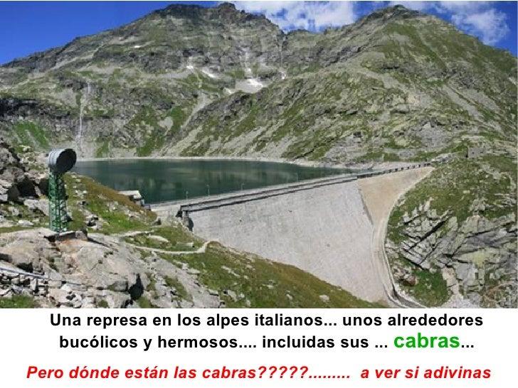 Una represa en los alpes italianos... unos alrededores   bucólicos y hermosos.... incluidas sus ... cabras...Pero dónde es...