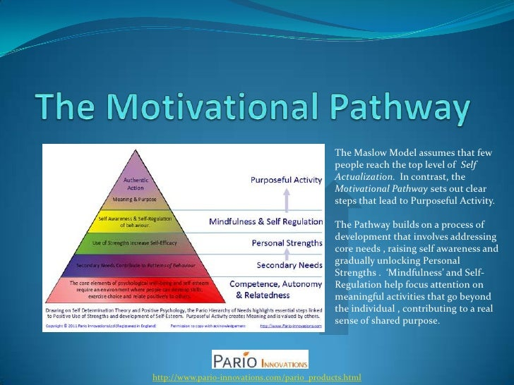 Chapter 9 maslow Flashcards | Quizlet