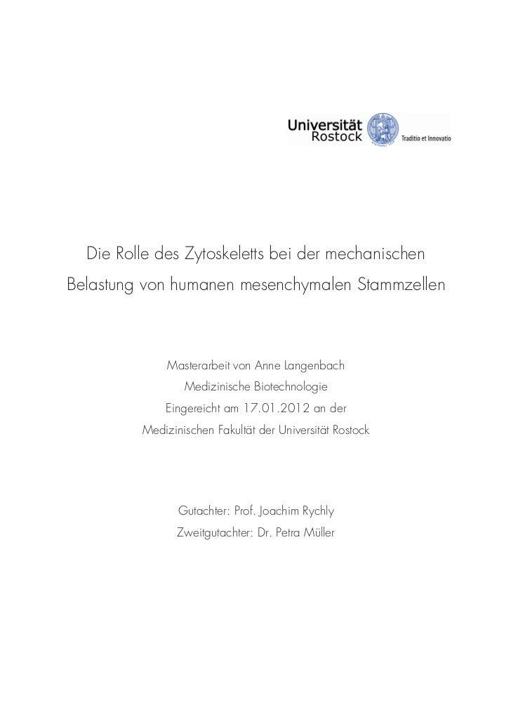 Die Rolle des Zytoskeletts bei der mechanischenBelastung von humanen mesenchymalen Stammzellen              Masterarbeit v...
