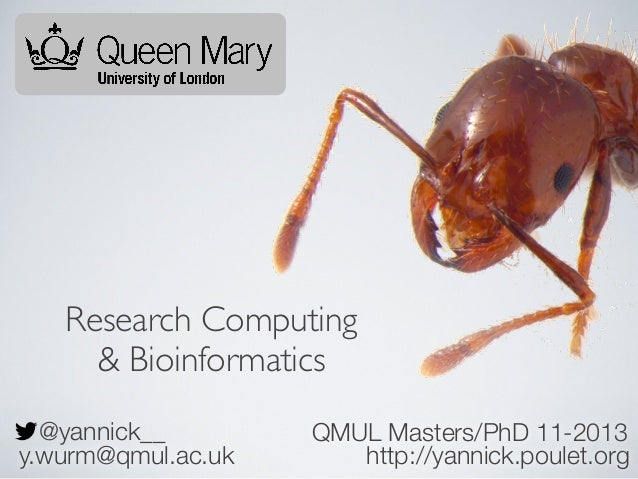 Research Computing & Bioinformatics @yannick__ y.wurm@qmul.ac.uk  QMUL Masters/PhD 11-2013 http://yannick.poulet.org