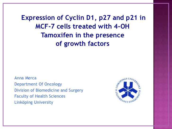 Expression of Cyclin D1, p27 and p21 in<br />MCF-7 cells treated with 4-OH <br />Tamoxifen in the presence<br />of growthf...