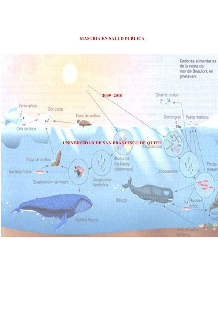 MASTRIA EN SALUD PUBLICA<br />-1092200304800<br />2009 -2010<br />UNIVERCIDAD DE SAN FRANCISCO DE QUITO<br />TABLA     DE ...