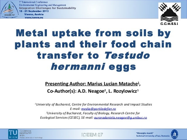 Metal Uptake from Soils by Plants and their Food Chain Transfer to Testudo hermanni Eggs