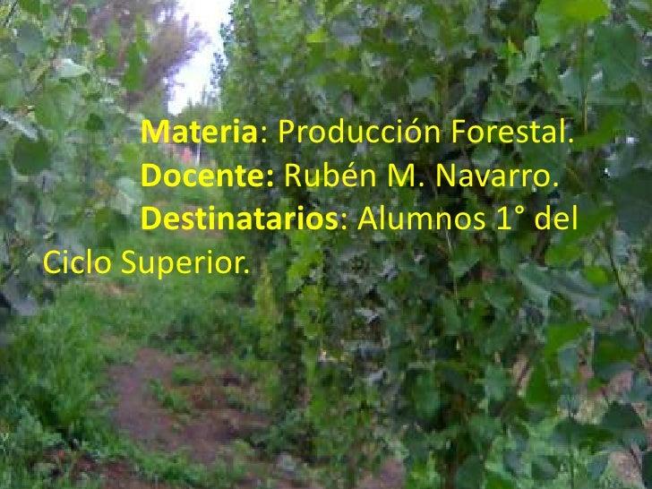 Materia: Producción Forestal.Docente: Rubén M. Navarro.Destinatarios: Alumnos 1° del                          ...