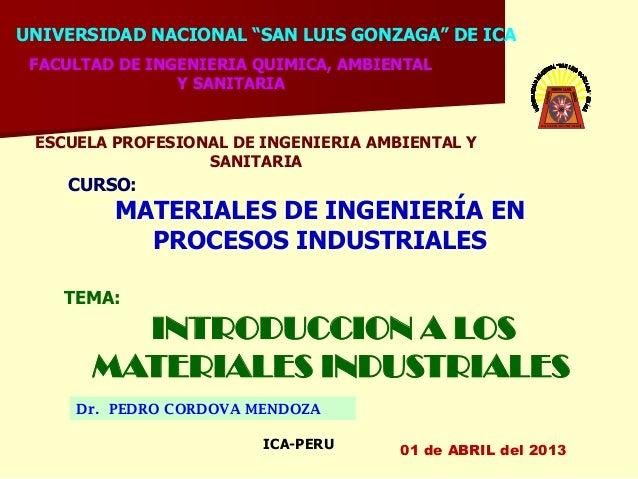 """UNIVERSIDAD NACIONAL """"SAN LUIS GONZAGA"""" DE ICA FACULTAD DE INGENIERIA QUIMICA, AMBIENTAL                Y SANITARIA ESCUEL..."""