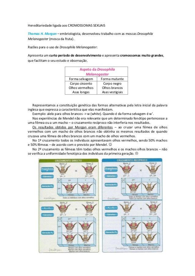 Materialgenetico  1