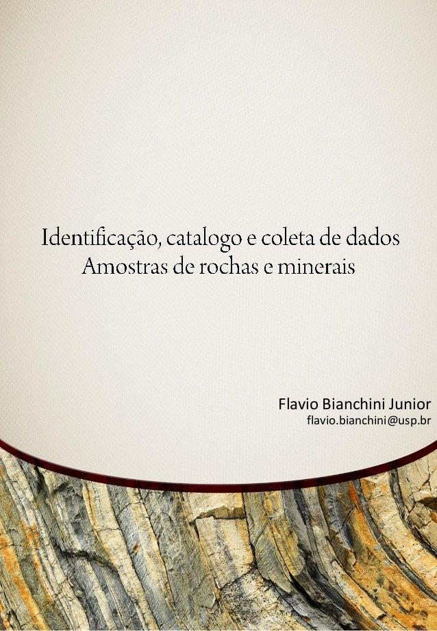 Flavio Bianchini Juniorflavio.bianchini@usp.br