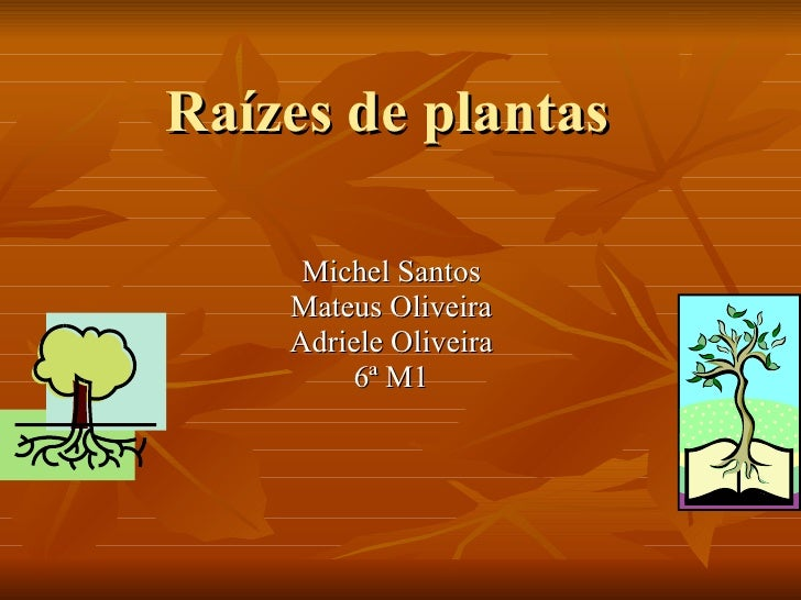 Raízes de plantas Michel Santos Mateus Oliveira Adriele Oliveira 6ª M1