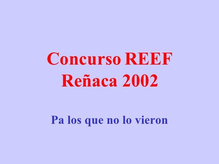 Concurso REEF Reñaca 2002 Pa los que no lo vieron www . tonterias . com