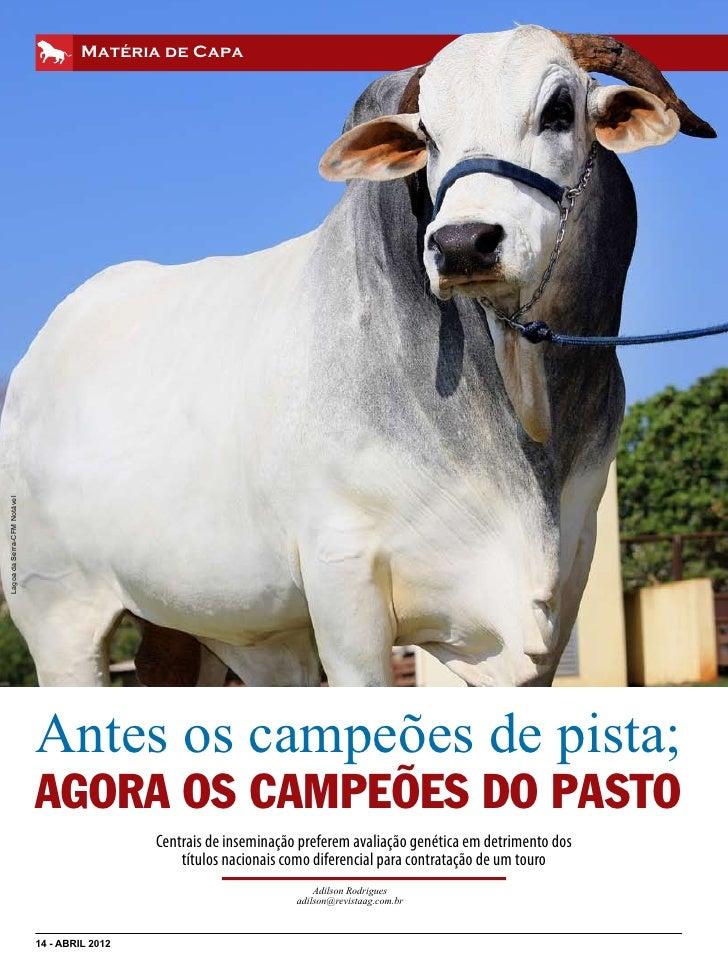 Matéria de CapaLagoa da Serra-CFM Notável                             Antes os campeões de pista;                         ...