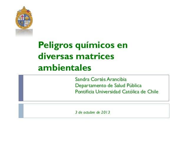 Sandra Cortés Arancibia Departamento de Salud Pública Pontificia Universidad Católica de Chile 3 de octubre de 2013 Peligr...