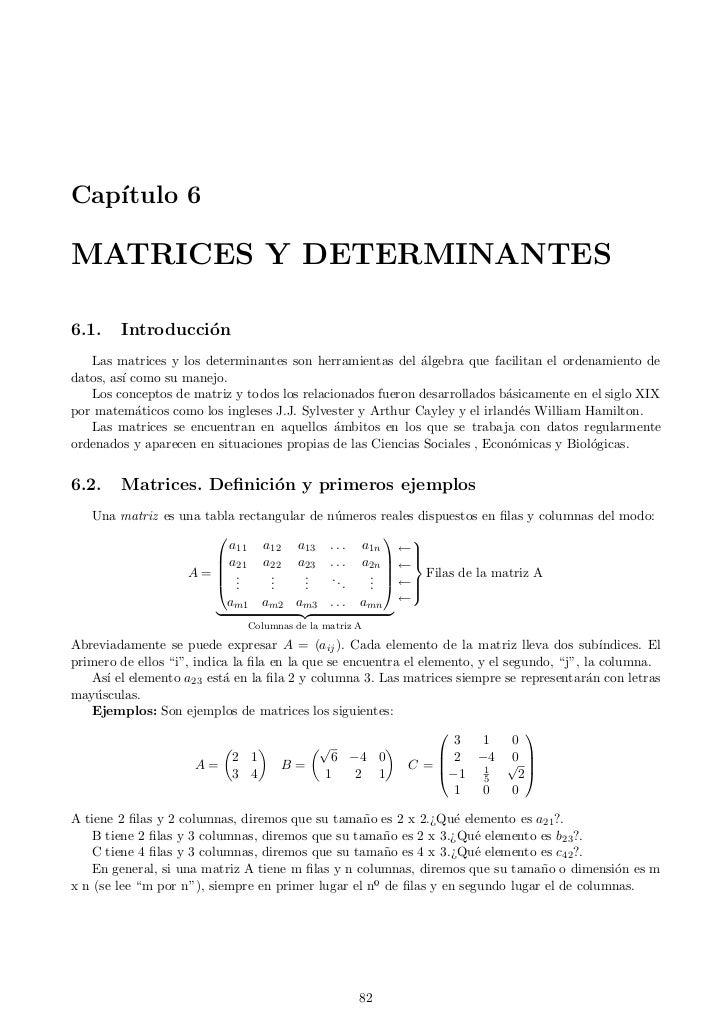 Cap´   ıtulo 6MATRICES Y DETERMINANTES6.1.    Introducci´n                  o   Las matrices y los determinantes son herra...