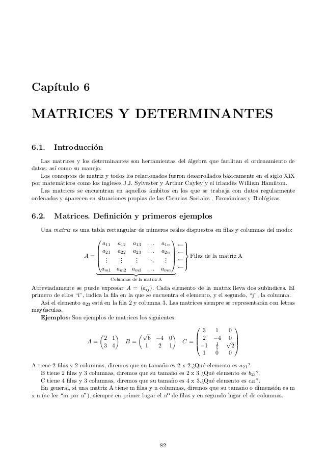 Cap´ ıtulo 6  MATRICES Y DETERMINANTES 6.1.  Introducci´n o  Las matrices y los determinantes son herramientas del algebra...