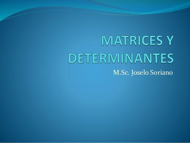 M.Sc. Joselo Soriano