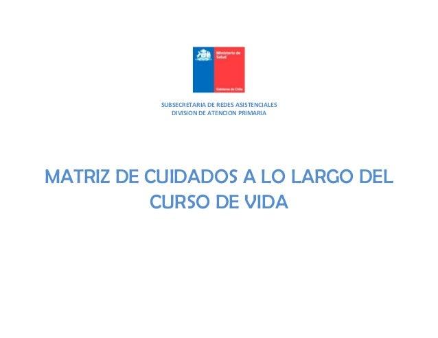 SUBSECRETARIA DE REDES ASISTENCIALES DIVISION DE ATENCION PRIMARIA MATRIZ DE CUIDADOS A LO LARGO DEL CURSO DE VIDA