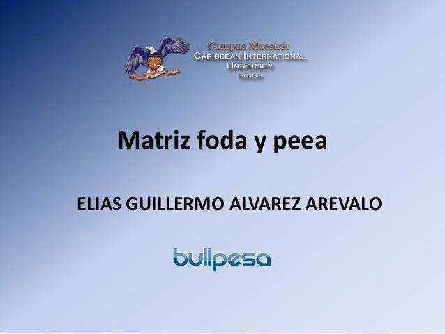 Matriz foda y peea ELIAS GUILLERMO ALVAREZ AREVALO