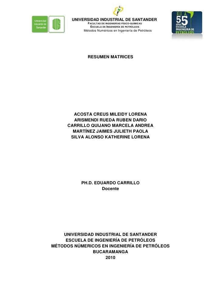 RESUMEN MATRICES<br />ACOSTA CREUS MILEIDY LORENA<br />ARISMENDI RUEDA RUBEN DARIO<br />CARRILLO QUIJANO MARCELA ANDREA<br...