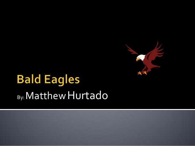 By:   Matthew Hurtado