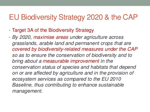 Eu biodiversity strategy