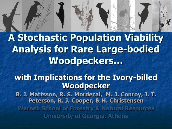 A Stochastic Population Viability Analysis for Rare Large-bodied Woodpeckers… with Implications for the Ivory-billed Woodp...