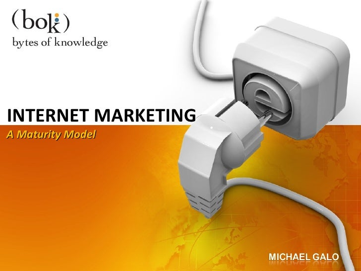 Maturity Model For Internet Marketing Strategy