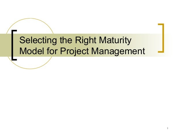 1 Selecting the Right Maturity Model for Project Management