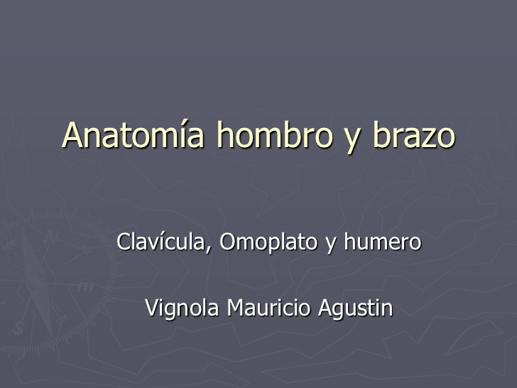 Anatomía hombro y brazo<br />Clavícula, Omoplato y humero<br />Vignola Mauricio Agustin<br />
