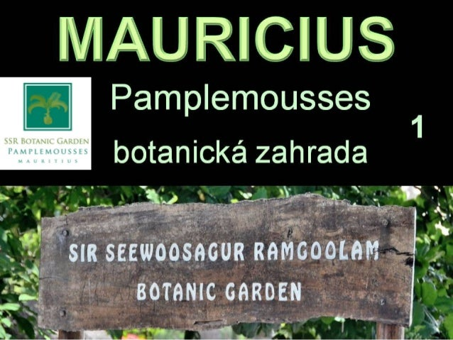 Mauricius botanical garden ssr 2012 1 for Gardening tools mauritius
