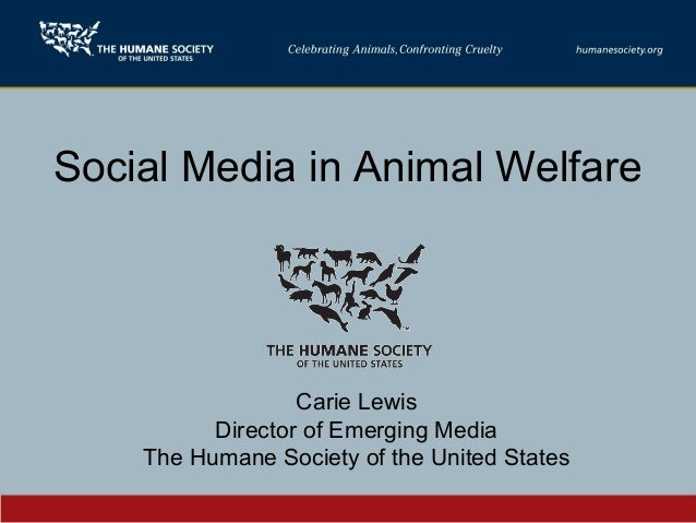 Social Media in Animal Welfare Carie Lewis Director of Emerging Media The Humane Society of the United States