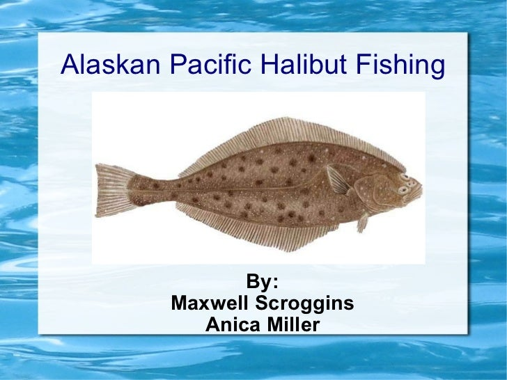 Alaskan Pacific Halibut Fishing By: Maxwell Scroggins Anica Miller