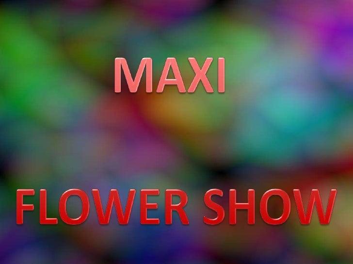 Maxi Flower Show 09 (Pp Tminimizer)