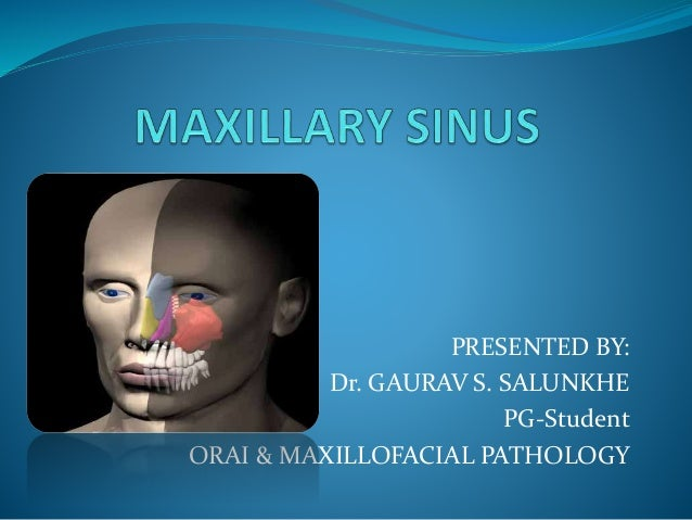 Maxillary sinus.pptx gaurav