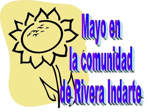 Mayo en rivera
