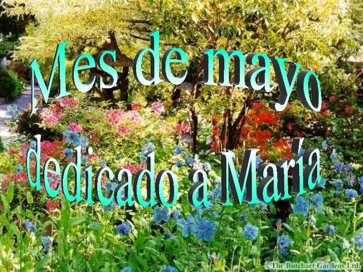 Mes de mayo dedicado a María