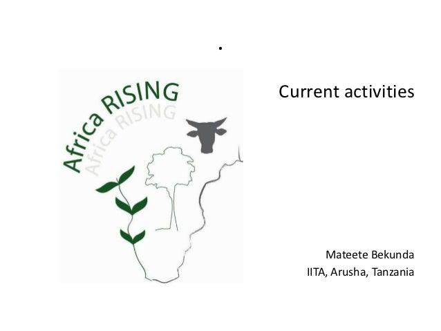 .    Current activities           Mateete Bekunda       IITA, Arusha, Tanzania