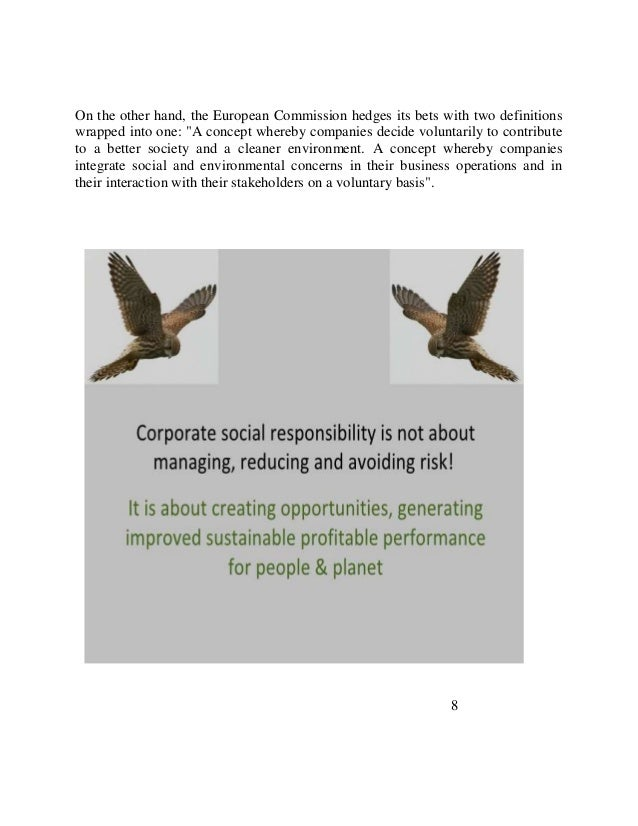 Corporate social responsibility dissertation repoe