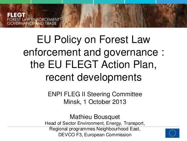 EU Policy on Forest Law enforcement and governance : the EU FLEGT Action Plan, recent developments ENPI FLEG II Steering C...