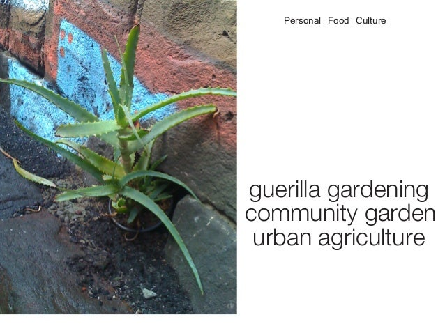 guerilla gardening community garden urban agriculture Personal Food Culture