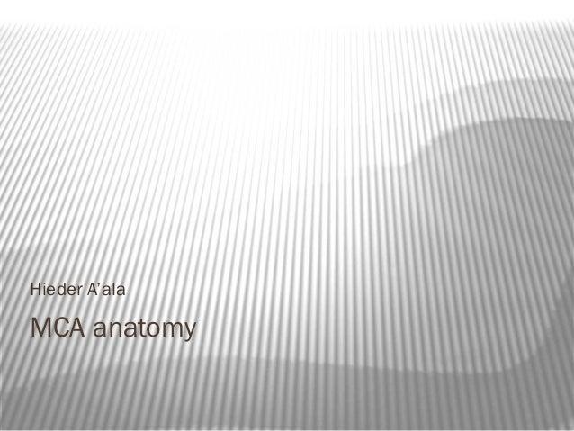 Hieder A'alaMCA anatomy