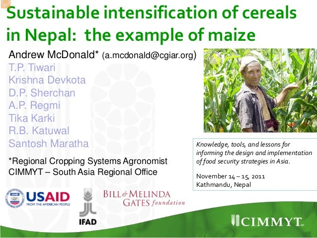Sustainable intensification of cereals in Nepal: the example of maize Knowledge, tools, and lessons for informing the desi...