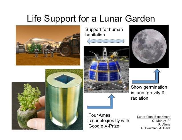 Life Support for a Lunar Garden              Support for human              habitation                                    ...