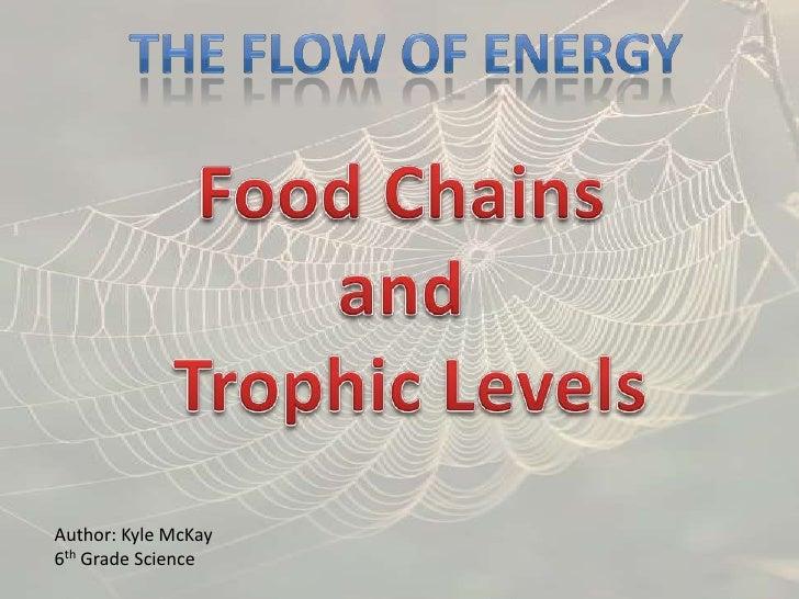 Mc kay kyle_energy flow food webs