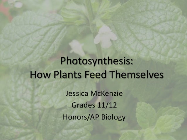 Photosynthesis:How Plants Feed Themselves       Jessica McKenzie         Grades 11/12      Honors/AP Biology