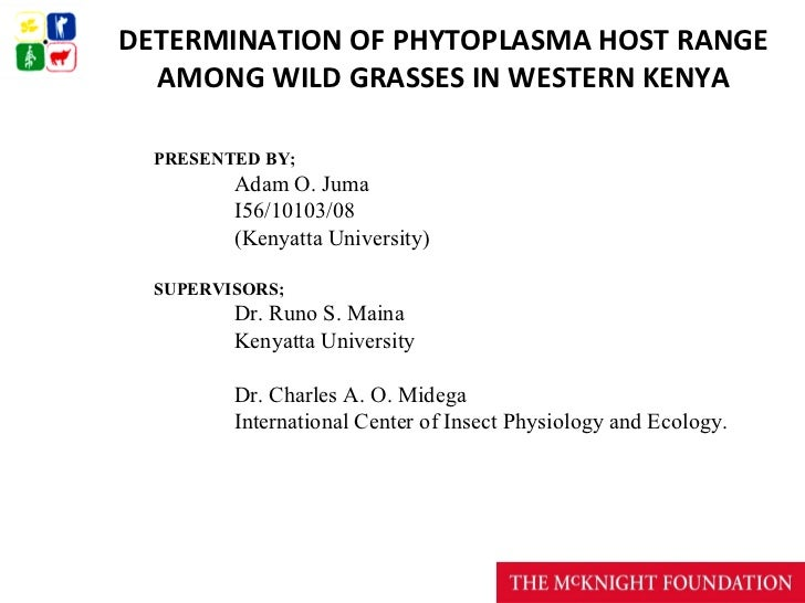 DETERMINATION OF PHYTOPLASMA HOST RANGE  AMONG WILD GRASSES IN WESTERN KENYA  PRESENTED BY;         Adam O. Juma         I...