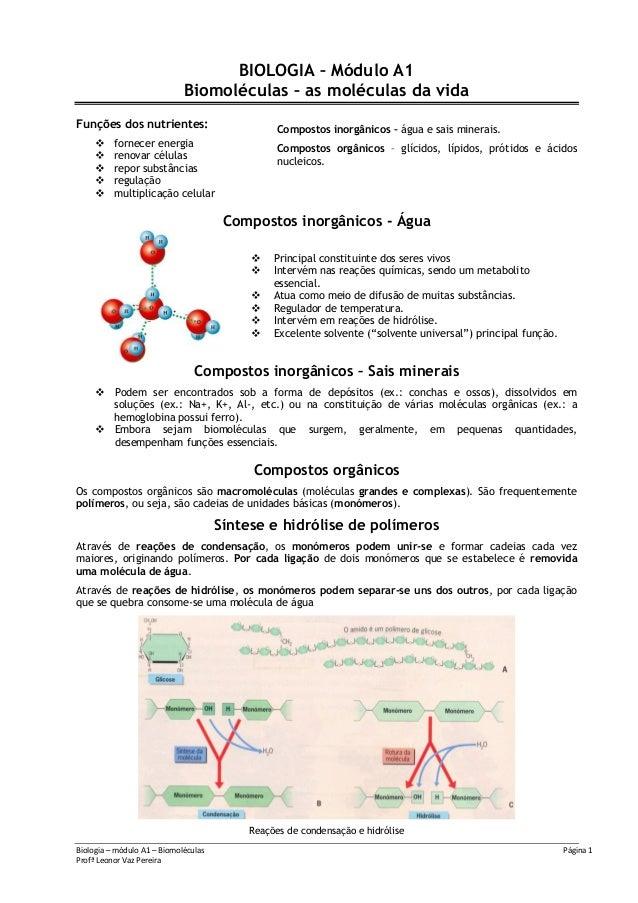 Biologia – módulo A1 – Biomoléculas Página 1Profª Leonor Vaz PereiraBIOLOGIA – Módulo A1Biomoléculas – as moléculas da vid...