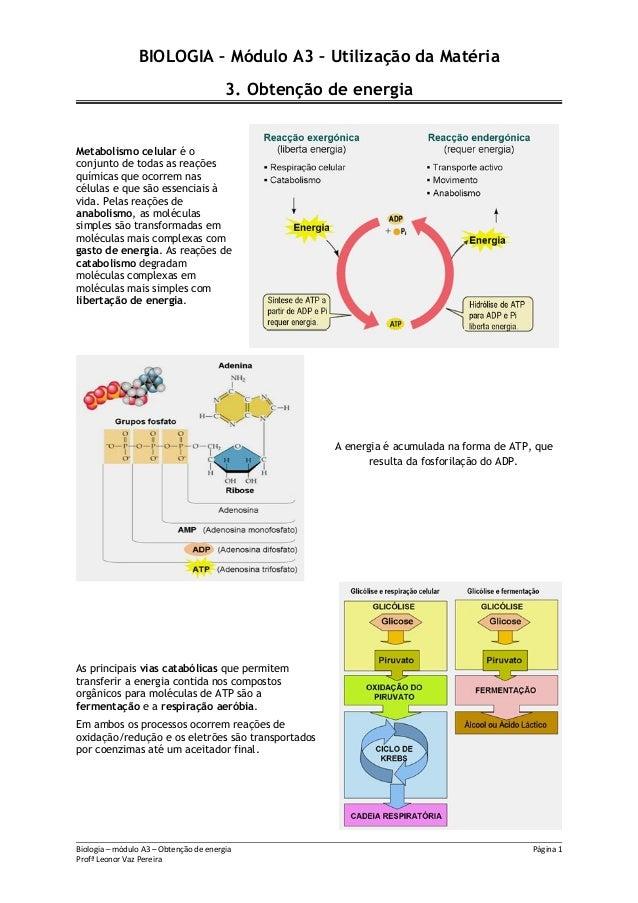 BIOLOGIA – Módulo A3 – Utilização da Matéria3. Obtenção de energiaMetabolismo celular é oconjunto de todas as reaçõesquími...