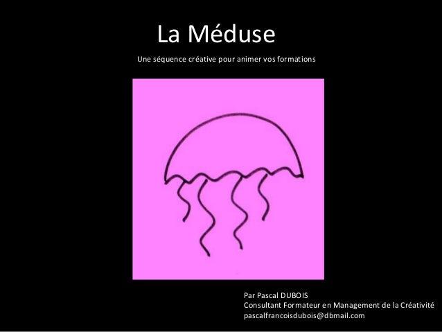 La Méduse Une séquence créative pour animer vos formations  Par Pascal DUBOIS Consultant Formateur en Management de la Cré...